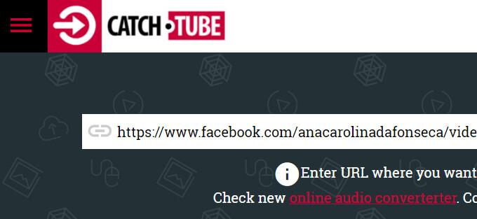 catch.tube free video downloader website